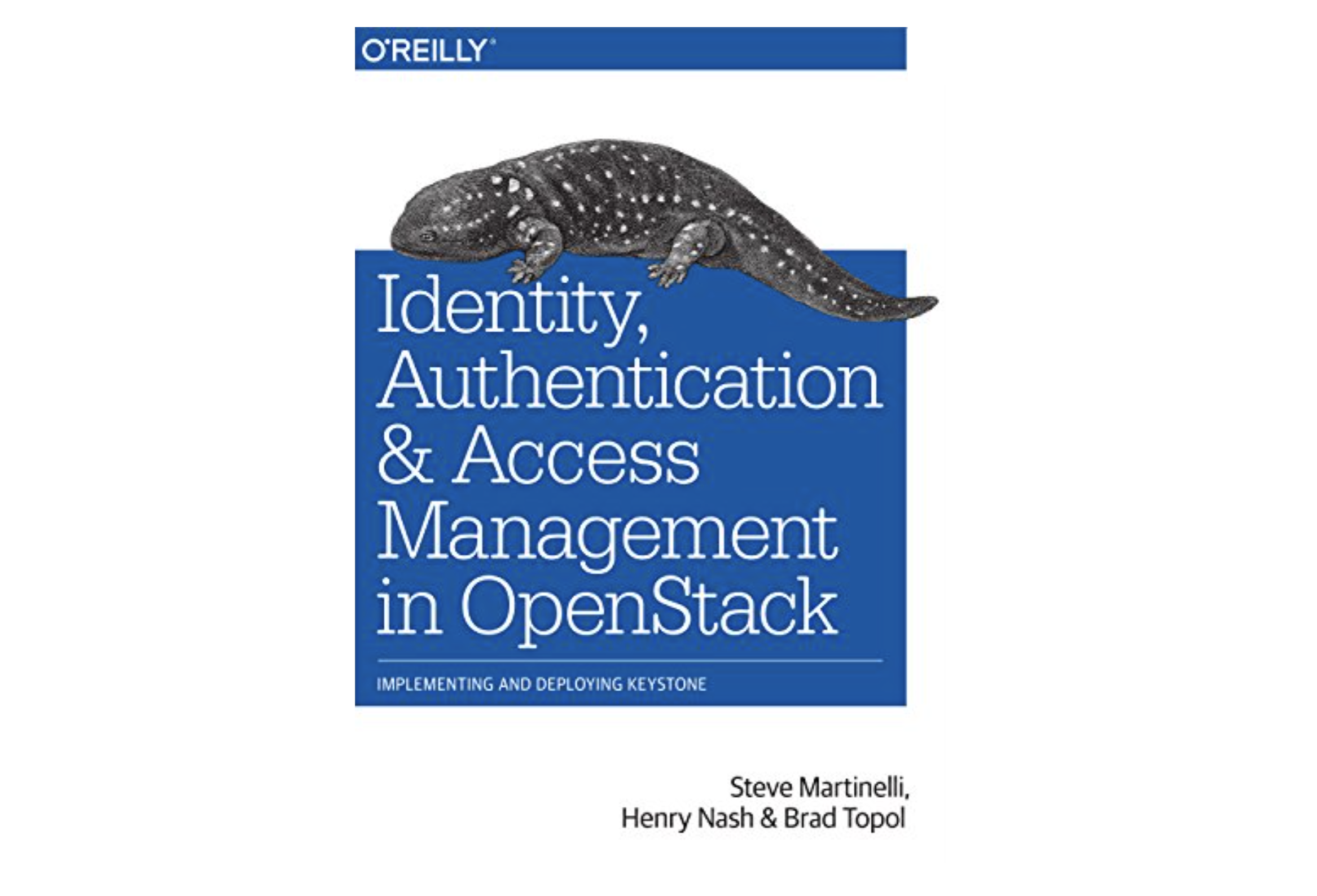 Access Management in OpenStack